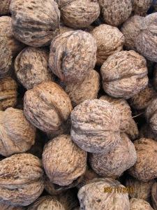 15 walnuts