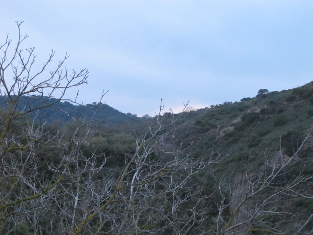 valley @ dusk1 16-3-13