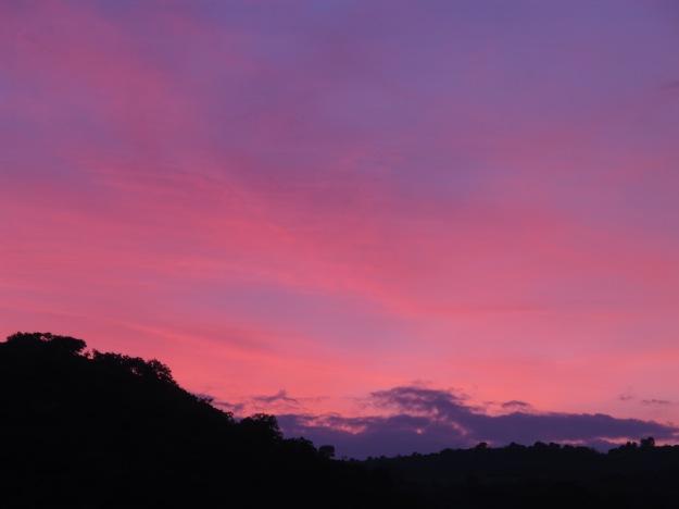 apricot sunset2 22-4-13
