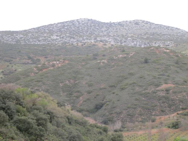 hills above jose antonio's1 24-3-13