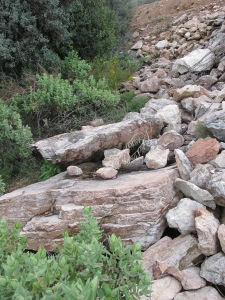 loose stones at top of col3 26-3-13