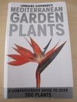 Mediterranean Garden plants - lorraine cavanagh 30-4-13