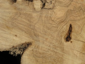 timber textures - olive wood 15-3-13