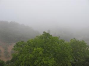 mist at 8am3 13-7-13