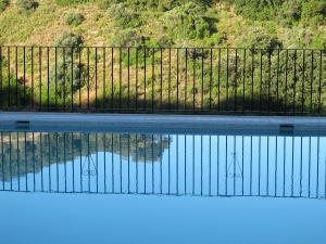pool reflection2 7-8-13
