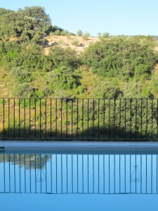 pool reflection3 7-8-13
