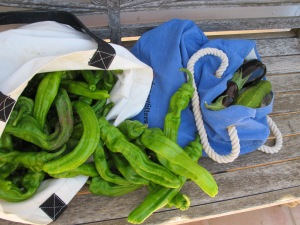 trempo - bag of veggies 9-8-13