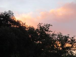 sunrise1 22-10-13