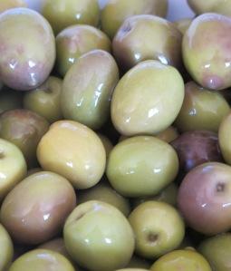 4 olives close-up 4-1-12