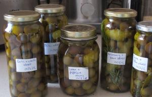 7 jars of finished olives 17-3-12