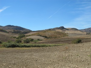 field of striped ploughed earth - looking towards sierra de las nieves2 12-10-13