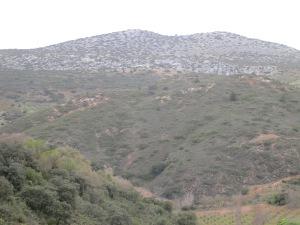 hillside above jose antonio's1 26-3-13