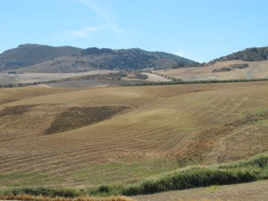 patchwork of fields looking towards cuevas del beccero 12-10-13 (2)