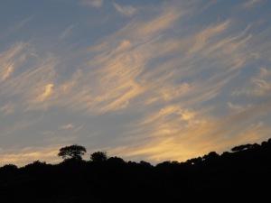 sunset10 8-10-13