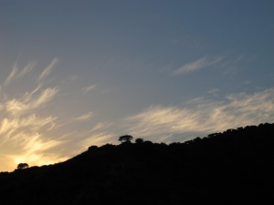 sunset3 8-10-13