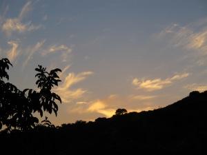 sunset9 8-10-13