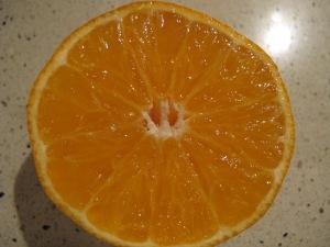half a clementine 3-12-13