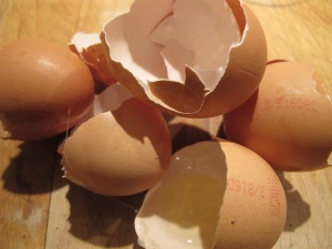 six broken egg shells 3-12-13