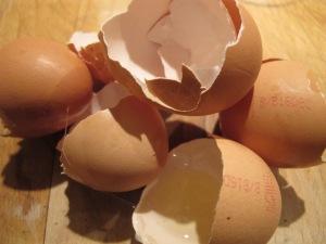 six broken egg shells 3-12-13