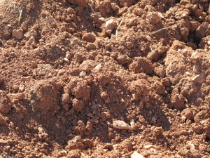 dry ploughed soil, field on road to canete 12-10-13