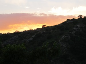 sunset1 7-10-13