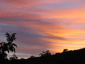 sunset2 17-11-13