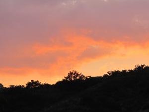 sunset5 7-10-13