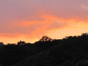 sunset6 7-10-13