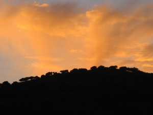 sunset9 7-10-13