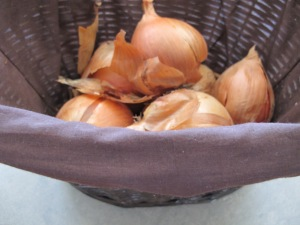 basket of onions 8-3-14
