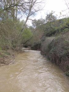 river after storm2 26-3-13