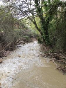 river after storm3 26-3-13