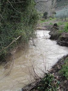river after storm9 26-3-13