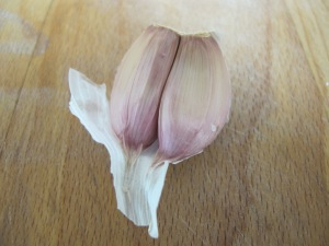 garlic clove - close-up 27-4-14