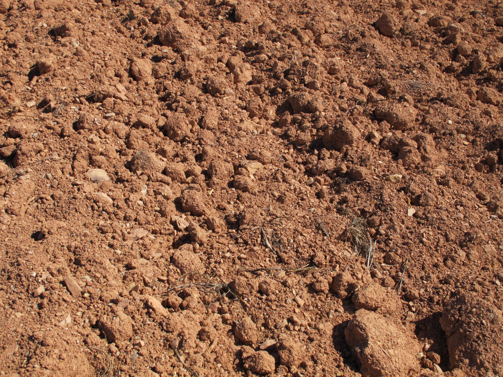 red soil notes on a spanish valley