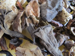 porcini - dried, close-up 9-4-14