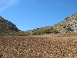 recently ploughed field on road from Canete 12-10-13