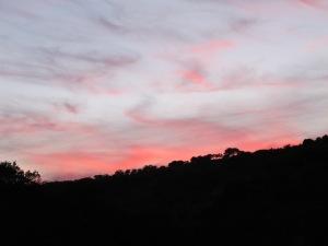 sunset6 4-10-13