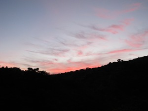 sunset7 4-10-13