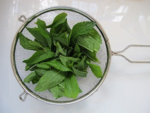 mint - rinsed in sieve 22-5-14