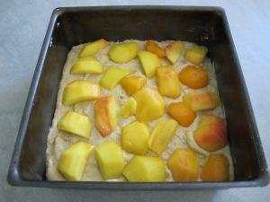 cake tin - ready to go into oven 2-6-14