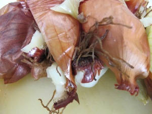 onion skins 22-6-14