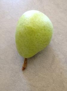 a pear 22-7-14 (2)