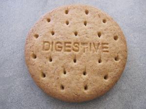 digestive biscuit - close-up 26-5-14