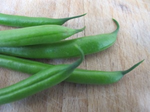 green beans - close-up 11-7-14