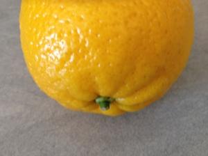 orange – close-up 22-7-14