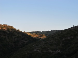 sunrise in july2 9-7-14