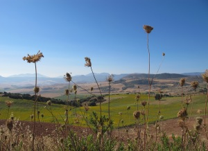 U is for - unrivalled beauty Looking towards the Sierra de las Nieves 27-7-13