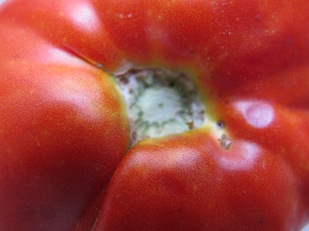 large tomato close-up 17-8-13 (3)