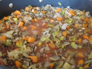 add stock to onion mix 27-1-15